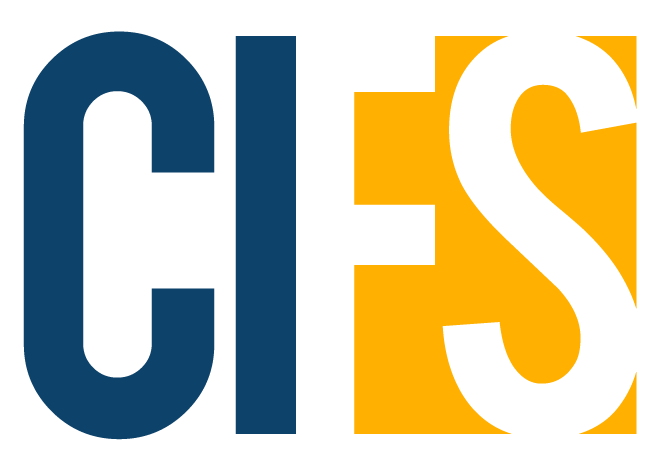 Council for Inclusion in Financial Services